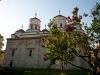 29_04_2012_148epureanu
