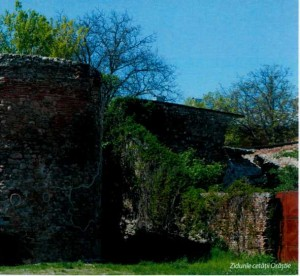 Zidurile Cetatii Orastie