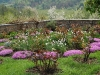 Mânăstirea Hurezi, flori la exterior